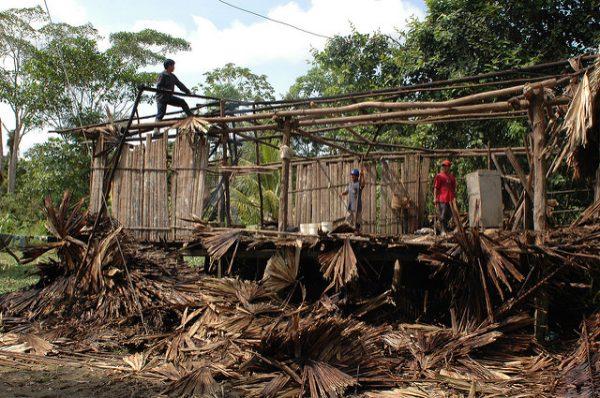 """Community """"minga"""" - Amazon Basin Peru"""